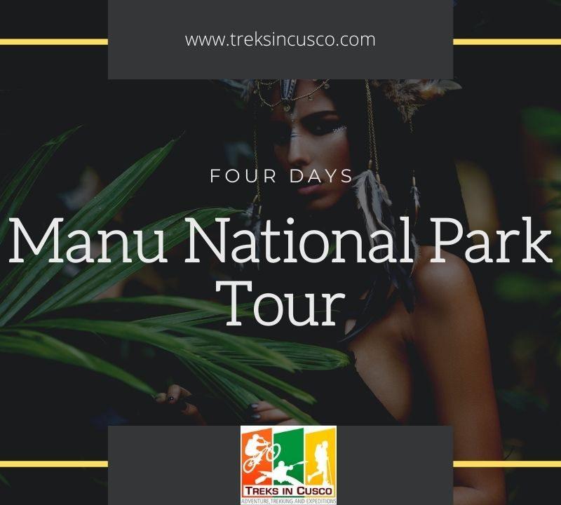 Manu Jungle Tours